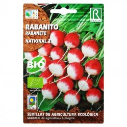 Rabanito National 2 3Grs.