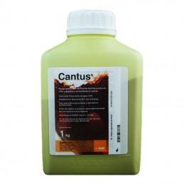 Cantus 1KG - Fungicida