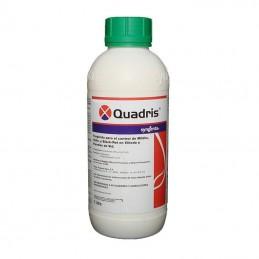 Quadris 1L - Fungicida vid