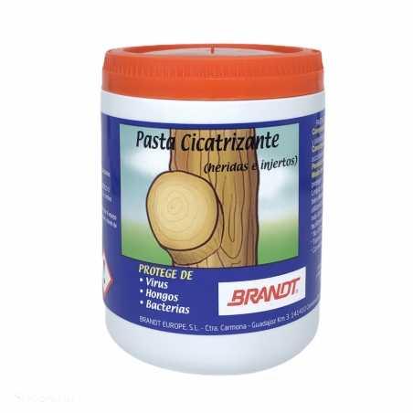 Pasta Cicatrizante 1 Kg Heridas e Injertos