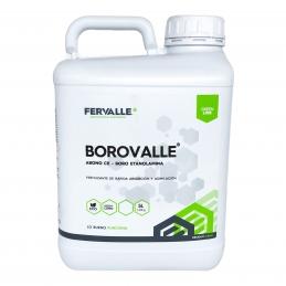 Borovalle 5L - Boro