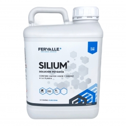 Silium 5L Fortificante