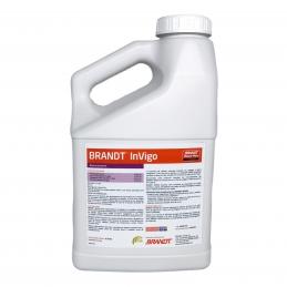 InVigo 4L - Bioestimulante