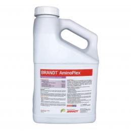 AminoPlex 4L - Activador...